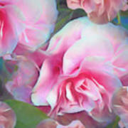 Unfolding Grace 5  Art Print