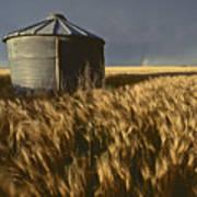 United States, Kansas Wheat Field Art Print