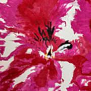 Uno Art Print by Dana Patterson