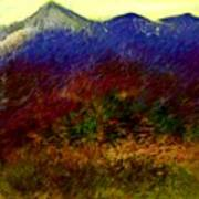 Untitled 4-11-10 Art Print