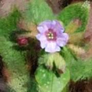 Untitled Floral -1 Art Print