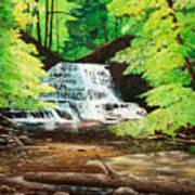 Upper Falls At Salt Springs Art Print