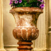Urn With Purple Flowers Art Print