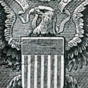 Us Dollar Eagle Art Print