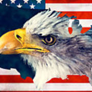 Usa Flag Eagle Art Print