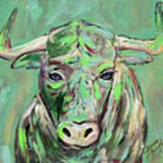 Usf Bull Art Print