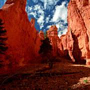 Utah - Bryce Canyon Art Print