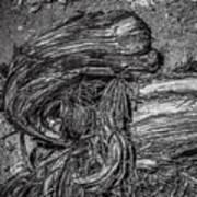 Utah Juniper Remains  Art Print