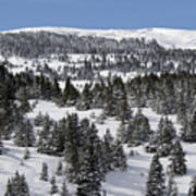 Vail Pass Colorado Winter Print by Brendan Reals