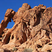 Valley Of Fire Elephant Rock Art Print