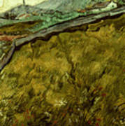Van Gogh: Field, 1890 Art Print