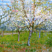 Van Gogh The Pink Orchard Art Print by Vincent Van Gogh
