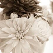 Vase Of Flowers In Sepia Art Print