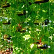 Vegetables Plant For Urban Life 2 Art Print