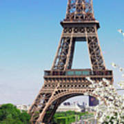 Eiffel Tower And Spring Art Print