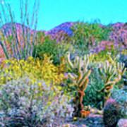 Verdant Spring Mohave Desert Art Print