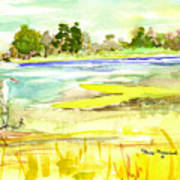 Vereen Marsh Art Print
