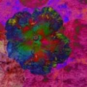 Vibrant Flower Series 1 Art Print by Jen White