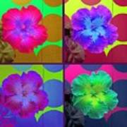 Vibrant Flower Series 2 Art Print by Jen White