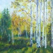 Vibrant Landscape Paintings - Arizona Aspens And Pine Trees - Virgilla Art Art Print