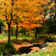 Vibrant October Art Print