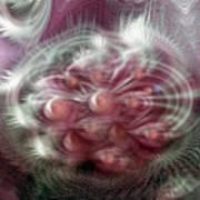 Vibrations Art Print
