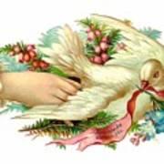 Victorian Dove Art Print