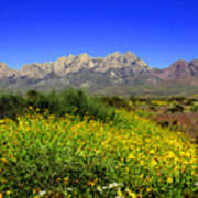 View From Dripping Springs Rd Art Print