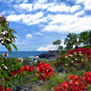 View From Keauhou Kona Art Print