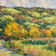 View From Pine Plains Art Print