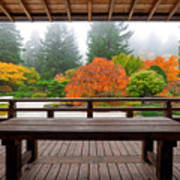 View From The Pavilion Art Print