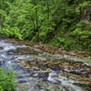 View In Vintgar Gorge - Slovenia Art Print