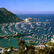 View Of Avalon Harbor Print by Cliff Wassmann