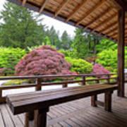View Of Japanese Garden From The Veranda Art Print