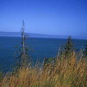 View Of Kachemak Bay, Alaska Art Print