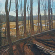 View Of Parkers Creek Art Print