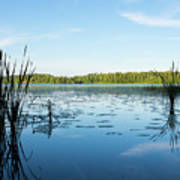 View Of The Lake Enajarvi Art Print