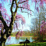 View Of The Lake In Spring Art Print