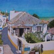 View On Obidos Art Print