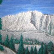 Viewfrom Spruces Art Print