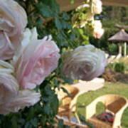 Villa Roses Art Print