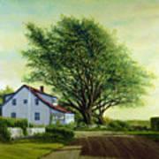 Village Road Orient  16x20 Art Print