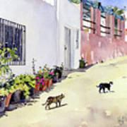 Village Street With Cats In Hortichuelas Art Print