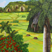 Vinales Valley Art Print