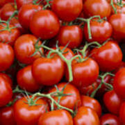 Vine Ripe Tomatos Print by John Trax