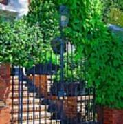 Vines Over Gate Art Print