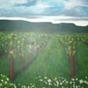 Vineyard Angel Art Print