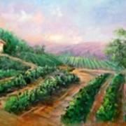Vineyard Haven Art Print