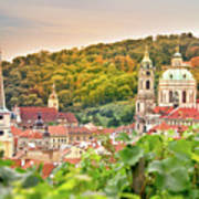 Vineyard Of Prague Art Print