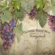 Vineyard Series - Chateau Pinot Noir Vineyards Sign Art Print